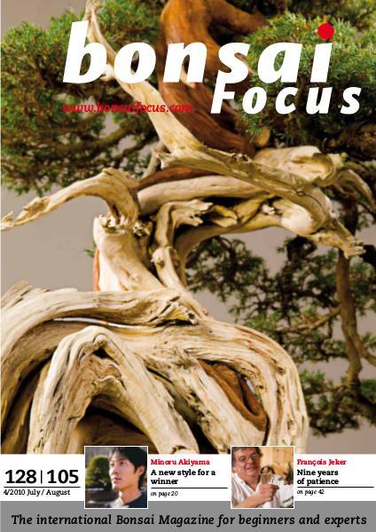 BONSAI FOCUS - English 2010-4