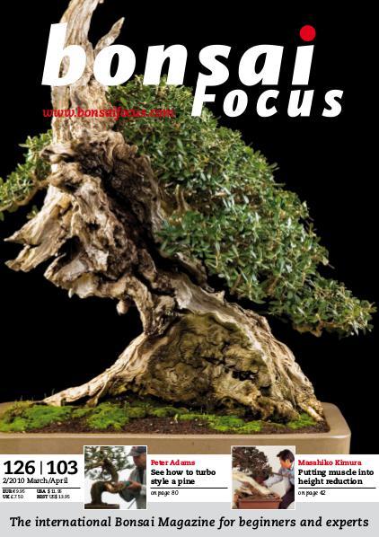 BONSAI FOCUS - English 2010-2