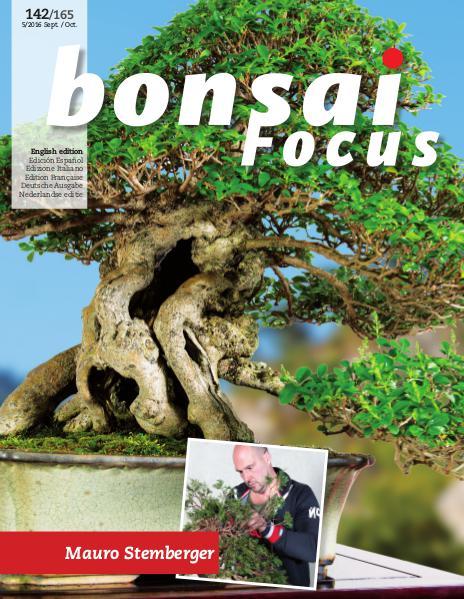 BONSAI FOCUS - English 2016-5