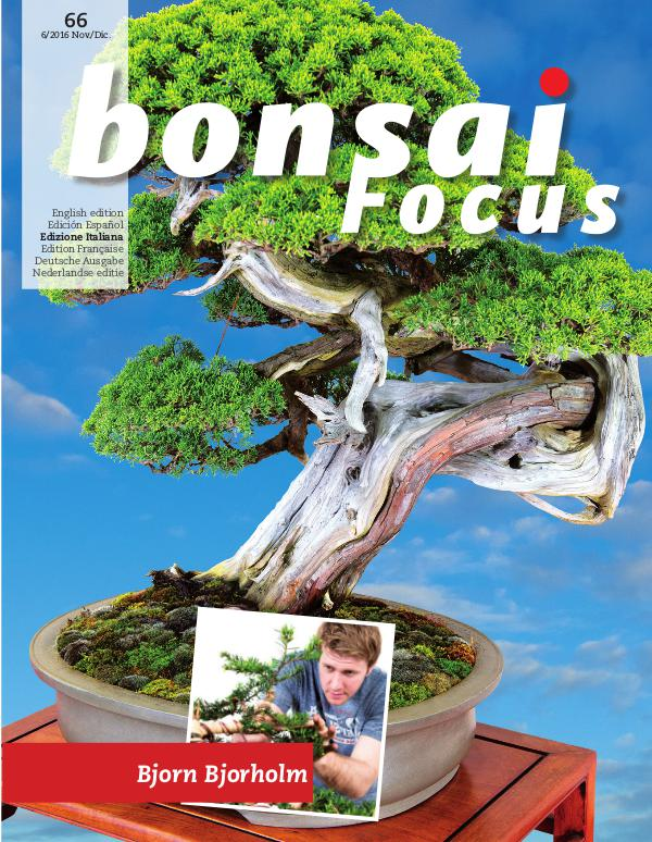 BONSAI FOCUS - Italiano 2016-6