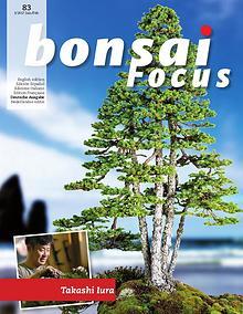 BONSAI FOCUS - Deutsch
