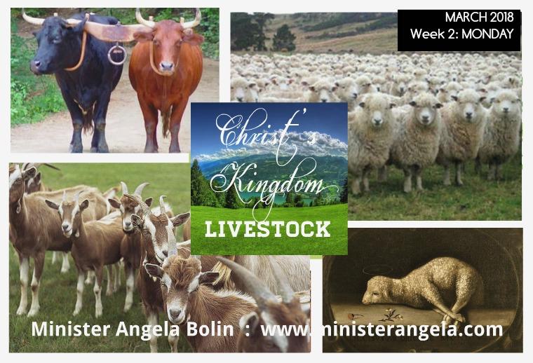 March 2018 Week 2:  Goats MONDAY