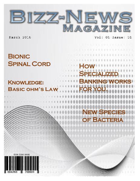 Bizz-News Magazine 01