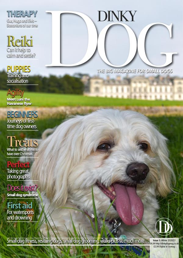 Dinky Dog Mag Winter 2020/21
