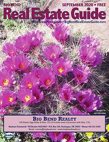 Big Bend Real Estate Guide