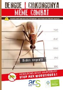 (Chikungunya)