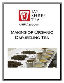 Making of Organic Darjeeling Tea