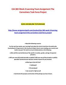 CJA 383 Week 2 Learning Team Assignment The Corrections Task Force Pr