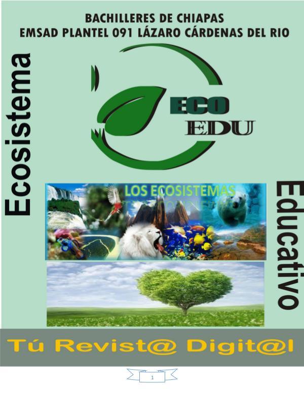 Ecosistema y Tipos de ecosistemas Ecosistemas