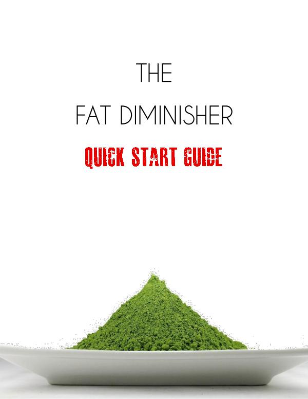 Fat Diminisher System PDF Free Download By Wesley Virgin Real & Fact Fat Diminisher Program