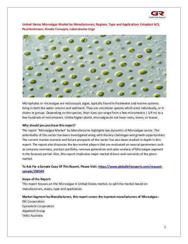 United States Microalgae Market by Manufacturers