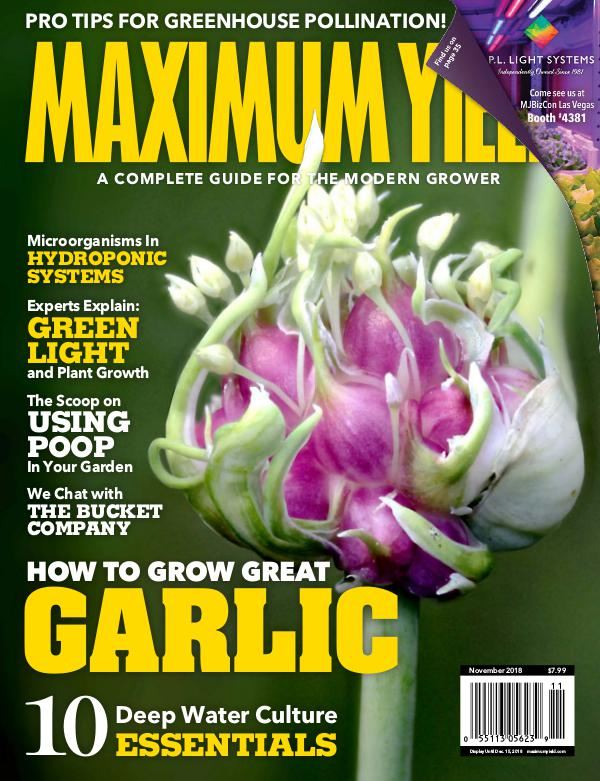 Maximum Yield USA November 2018