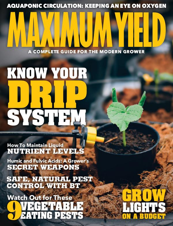 Maximum Yield USA October/November 2019