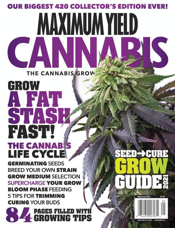 Maximum Yield Cannabis Canada - Preview May/June 2021