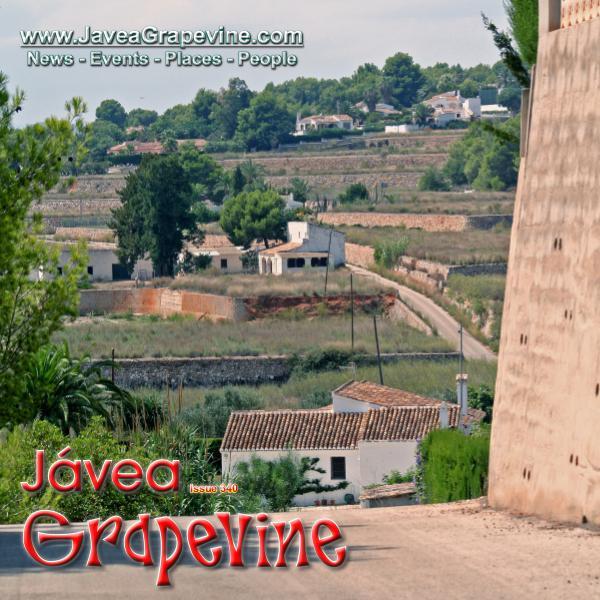 Javea Grapevine 340