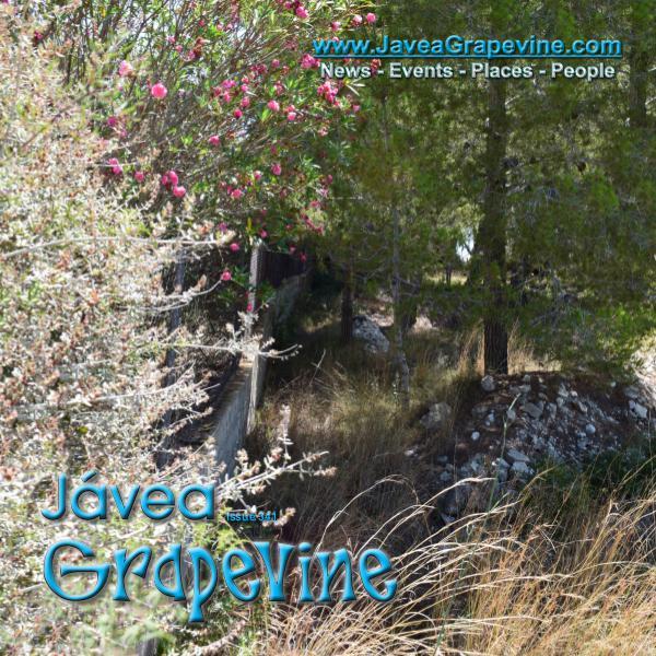 Javea Grapevine 341