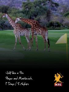 Golf like a Pro: Player and Matkovich Version 1