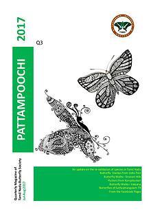 Pattampoochi - Butterfly Magazine