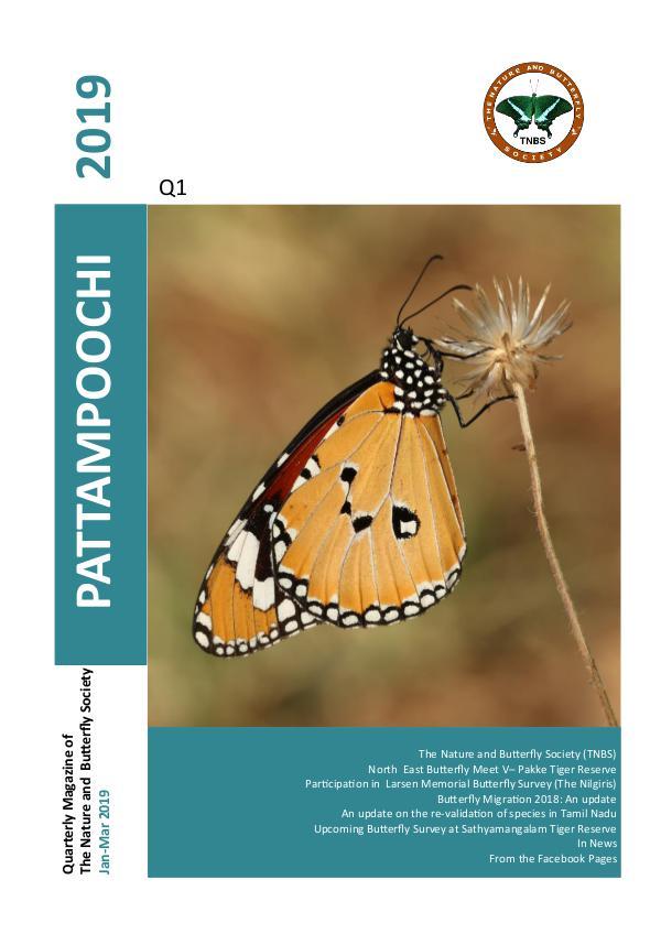 Pattampoochi - Butterfly Magazine Pattampoochi - Wings 3 Veins 1 2019