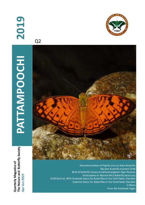 Pattampoochi - Butterfly Magazine Pattampoochi - Wings 3 Veins 2 2019
