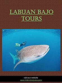 Komodo Tours | indonesiajuara.asia