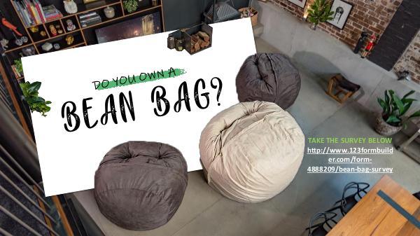 Do you own a bean bag? Do you own a bean bag