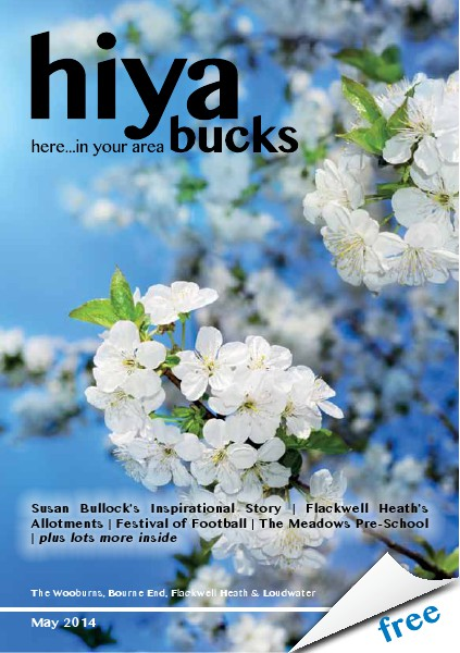 hiya bucks in Bourne End, Flackwell Heath, Marlow, Wycombe, Wooburn May 2014