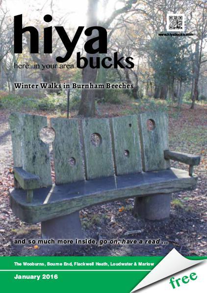 hiya bucks in Bourne End, Flackwell Heath, Marlow, Wycombe, Wooburn January 2016