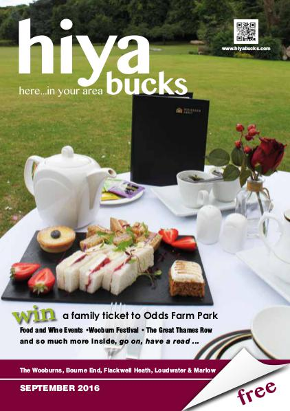 hiya bucks in Bourne End, Flackwell Heath, Marlow, Wycombe, Wooburn September 2016