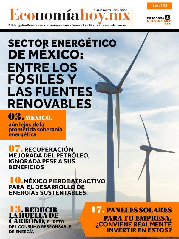 Economía Hoy Edición 9 Enero 2021