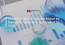 Global Market Analysis Report
