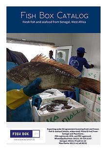 Fish Box catalog