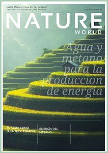 Agua y Metano para la produccion de energia.