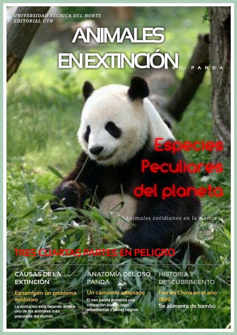 Animales en peligro de extinción-Oso Panda Volumen 1