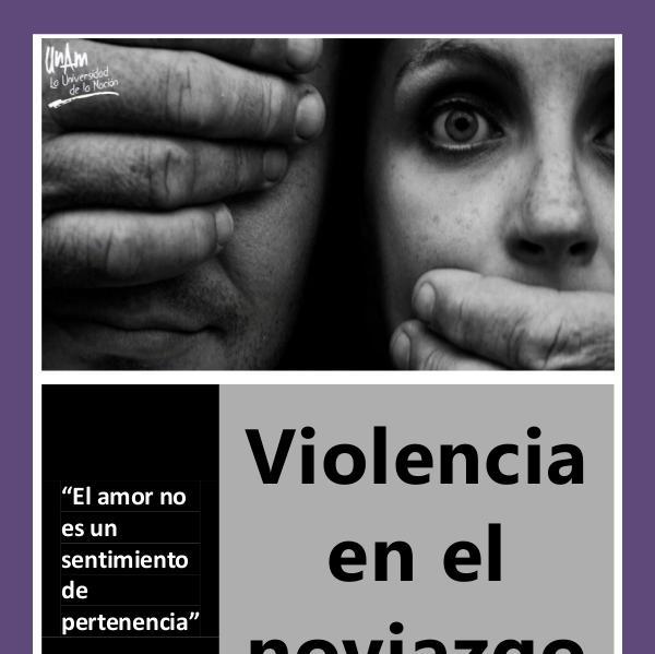 Violencia en el Noviazgo Proyecto final Lucero 1