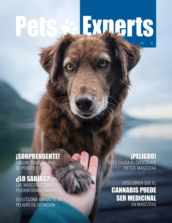 Pets Experts Magazine Febrero 2021