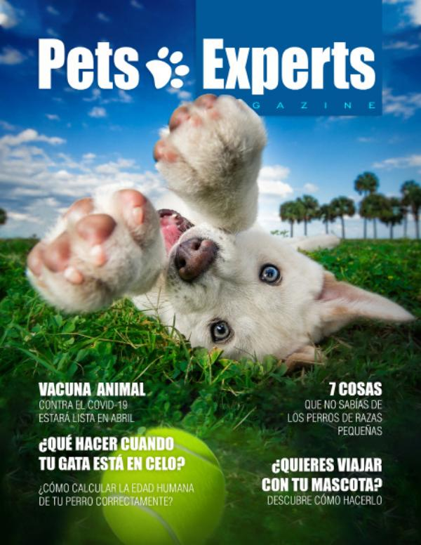 Pets Experts Magazine Marzo 2021