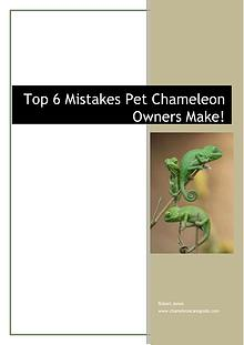 Chameleon Care Guide Robert Jones