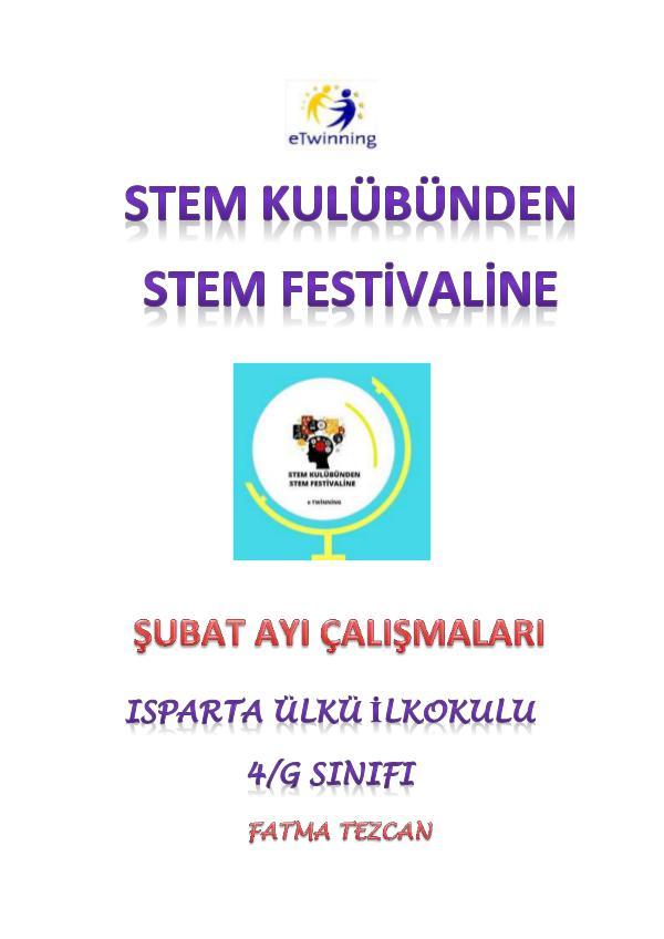 STEM KULÜBÜNDEN STEM FESTİVALİNE - ŞUBAT ÇALIŞMASI STEM