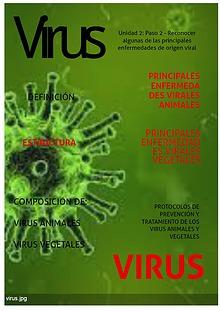 Reconocer algunas de las principales enfermedades de origen viral.