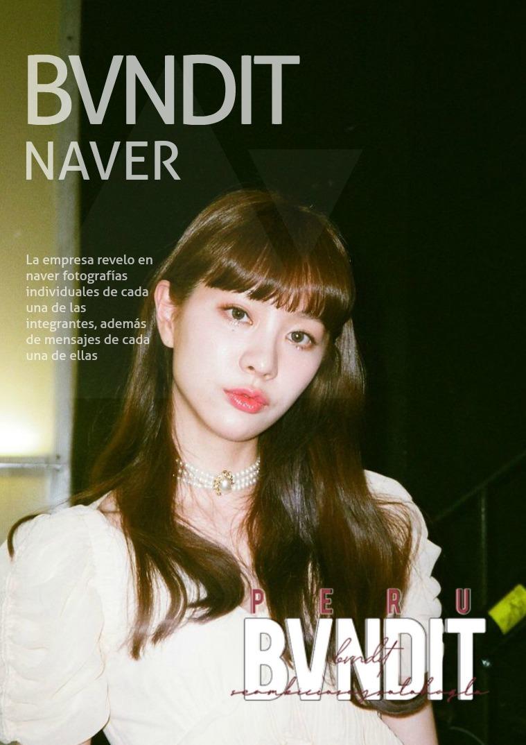 BVNDIT | Naver 01