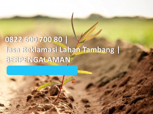 Jasa Reklamasi Lahan Tambang, 0822 600 700 80, TERMURAH 0822 600 700 80, Jasa Reklamasi Lahan Tambang, BER