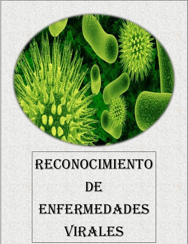 RECONOCIMIENTO DE ENFERMEDADES VIRALES VIROLOGIA 2