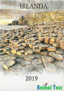 Catálogo Irlanda