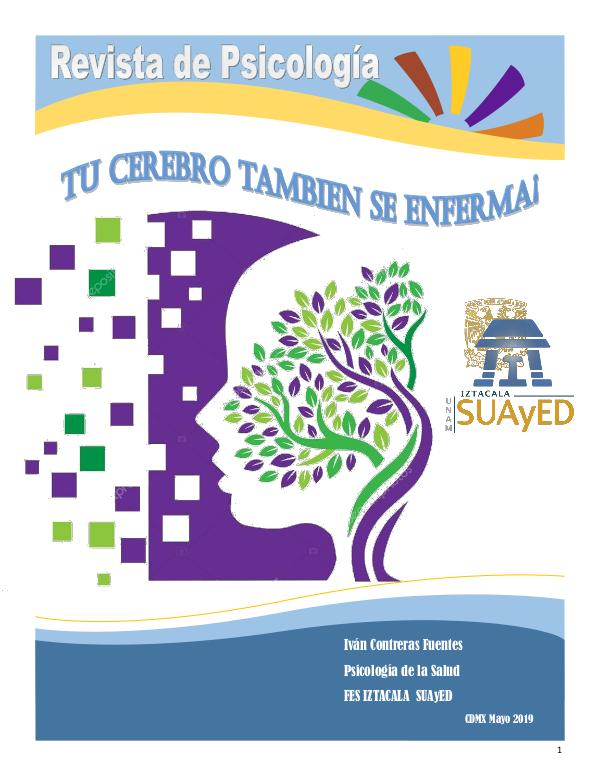 Revista Psicologca en el Campo de la Salud Revista de Psicología pdf