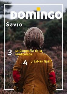 Domingo Sabio