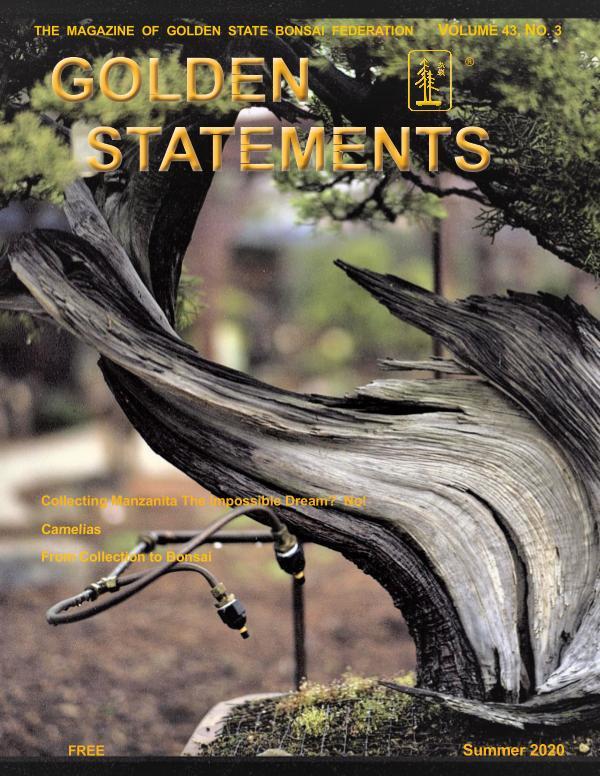 Summer Issue 2020