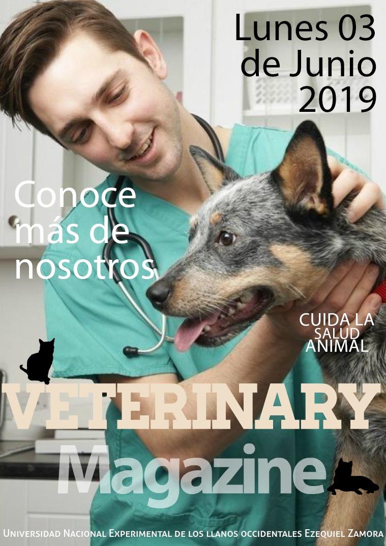 Medico veterinario 1