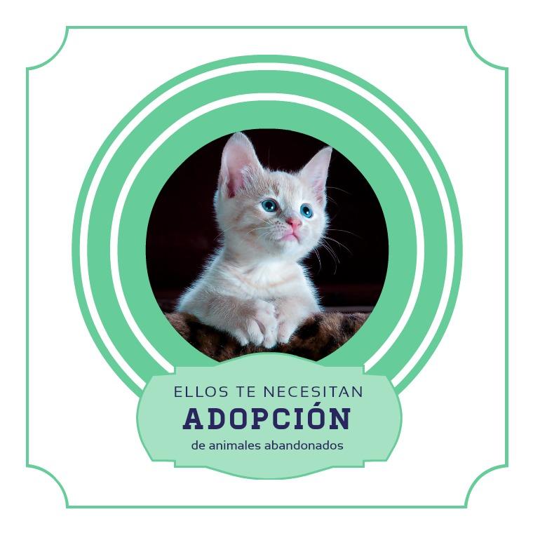 Adoptame 1
