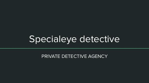Best Private Detective Agency In Pune Specialeye detective 2